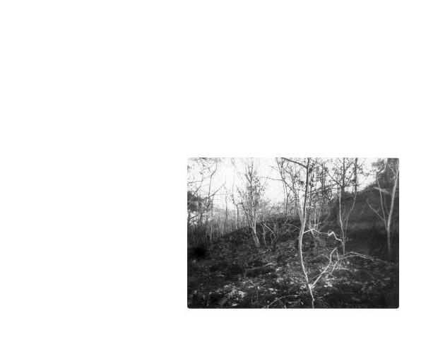 madicobosch_retreat_6p51